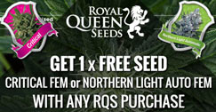 Royal Queen Seeds Promotion