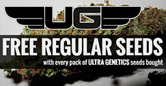 Ultra Genetics Promotion