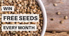 Win Free Seeds Every Month