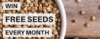 Win Free Cannabis Seeds Every Month
