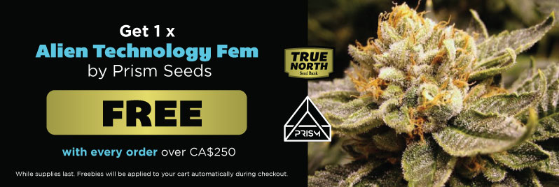 Prism Seeds Site-wide Promotion